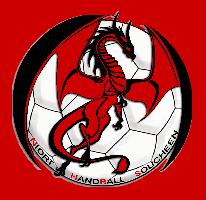 Niort Handball solide vainqueur de Grand-Poitiers-Valvert en match de préparation (N3M)